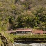 高知県の秘湯「べふ峡温泉」HP全面リニューアルしました。